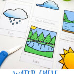 Water Cycle Worksheets for Kids