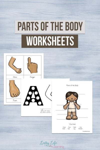 Parts of the Body Worksheets for Kids