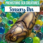 Dinosaur lovers will love this prehistoric sea creature sensory bin with toys from Safari Ltd, a huge hit with my own kids.