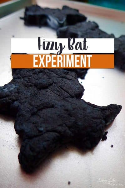 If you are searching for a fun way to introduce bats to your child, give this fizzy bat experiment a try! You're kids will love it, too!