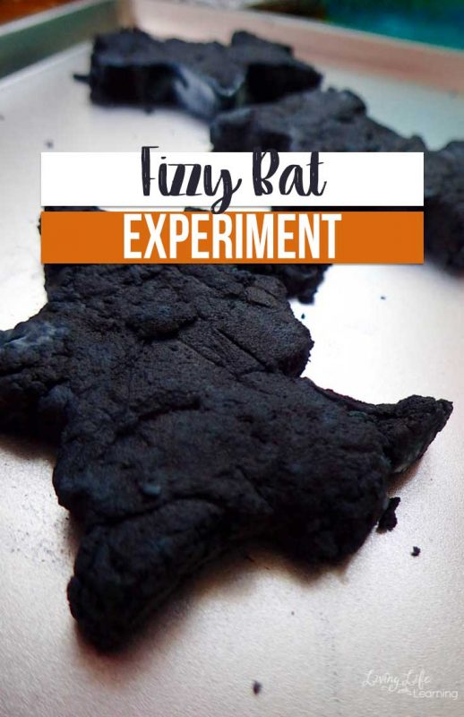 If you are searching for afun way to introduce bats to your child, give this fizzy bat experiment a try! You're kids will love it, too!