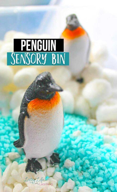 Easy Penguin Sensory Bin with cottonballs and gravel