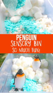 Simple Penguin Sensory Bin with cottonballs and gravel