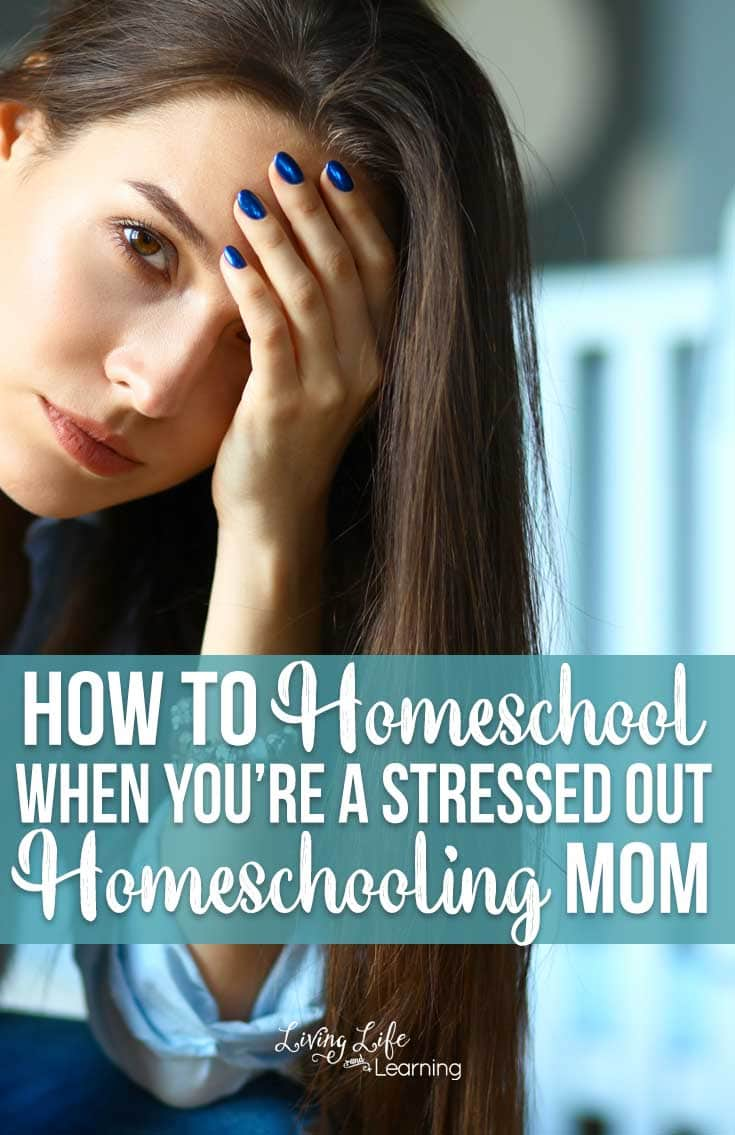 When things aren't going your way, see these tips on how to homeschool when you're a stressed out homeschooling mom to get you going the right way.