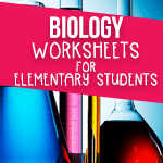 Biology Worksheets for Elementary Students