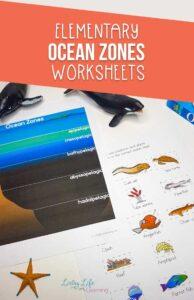 Elementary Ocean Zones Worksheets