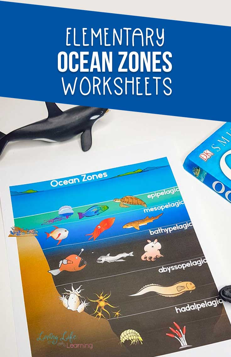 Ocean Zones Worksheets for Kids