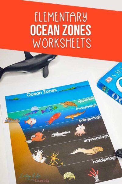 Ocean Zones Worksheets