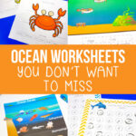 Ocean Worksheets for Kids