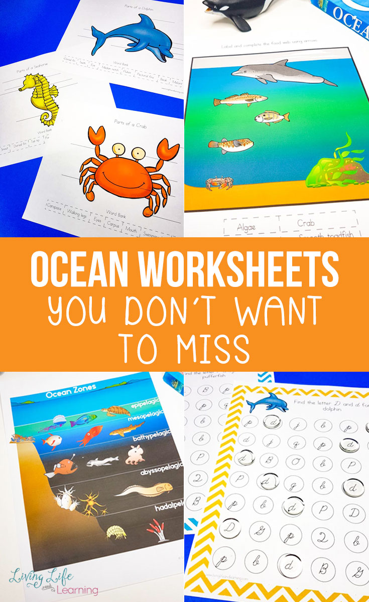 We've got Ocean worksheets you don't want to miss! Dive right into ocean math, ocean reading and ocean science, and ride the wave of excited students. Your preschooler, kindergartener or early elementary student will love learning about ocean animals and other ocean-themed fun.