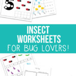 Free Insect Worksheets for bug lovers