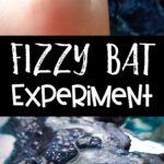 Fizzy bat experiment