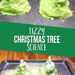 Fizzy Christmas Tree Science Experiment