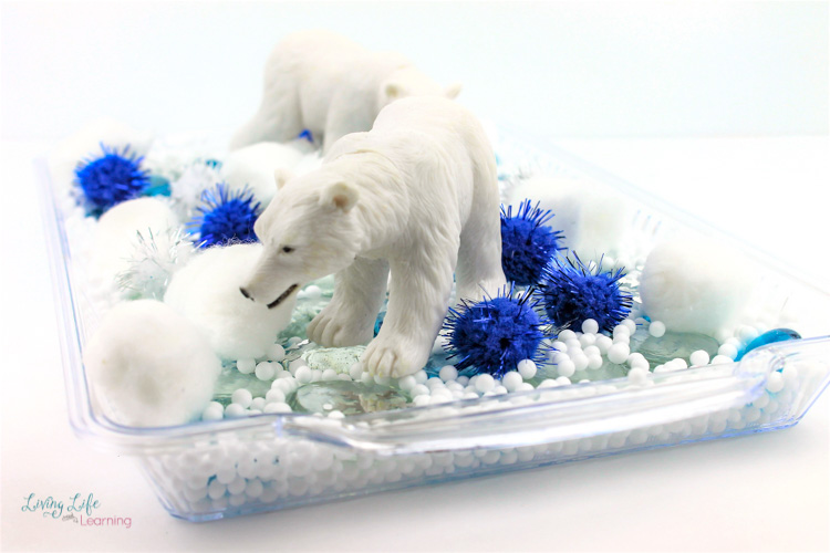 Arctic animal sensory play idea