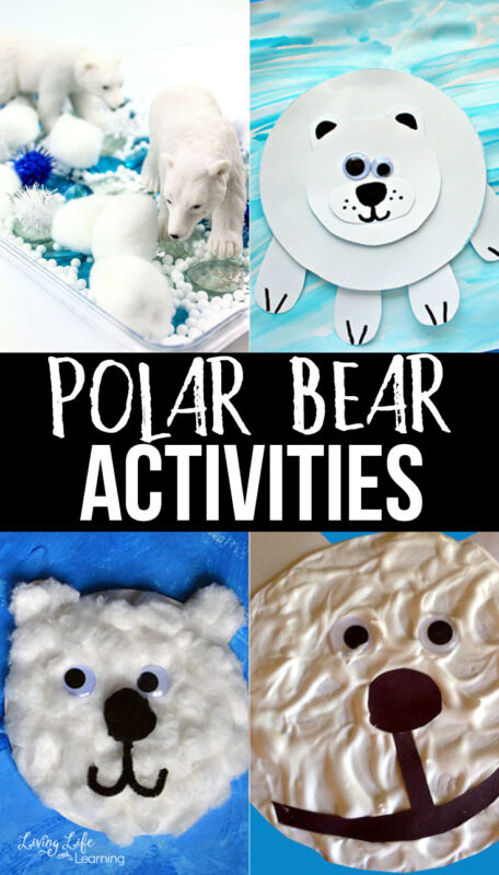 Preschool Polar Bear Activities