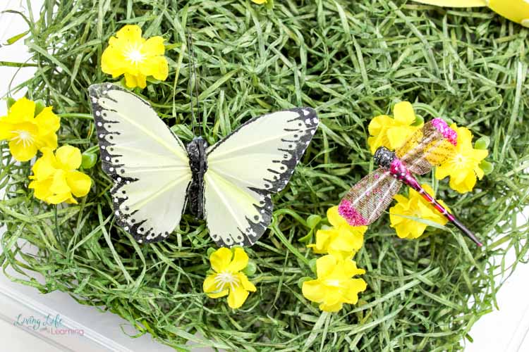 butterfly sensory bin for spring with dragonfly and flowers