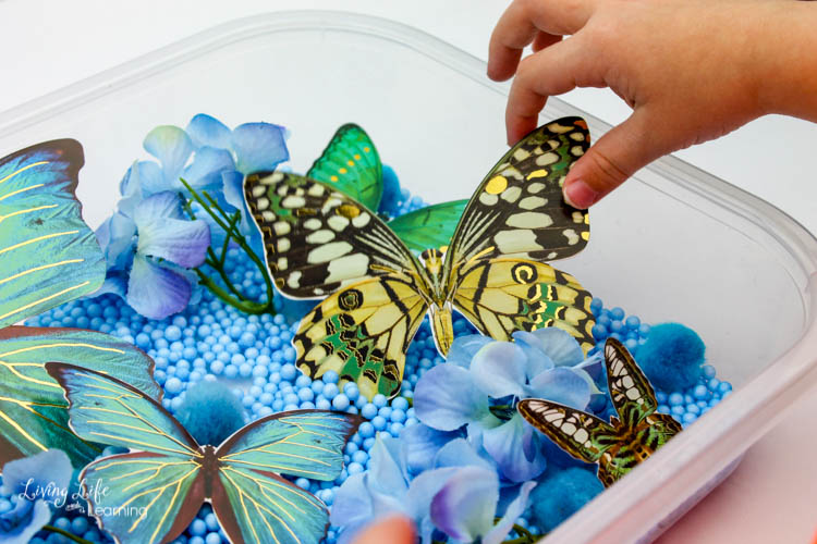 A child's hand picks up a butterfly out of the easy butterfly sensory bin