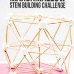 Hexagon Marshmallow STEM Building Challenge