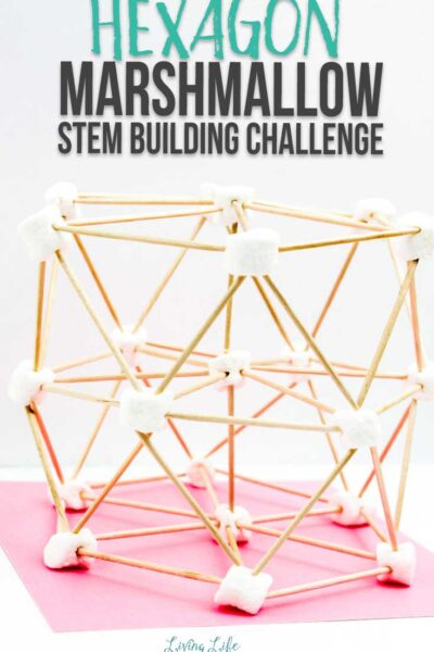 Hexagon Marshmallow STEM Building Challenge