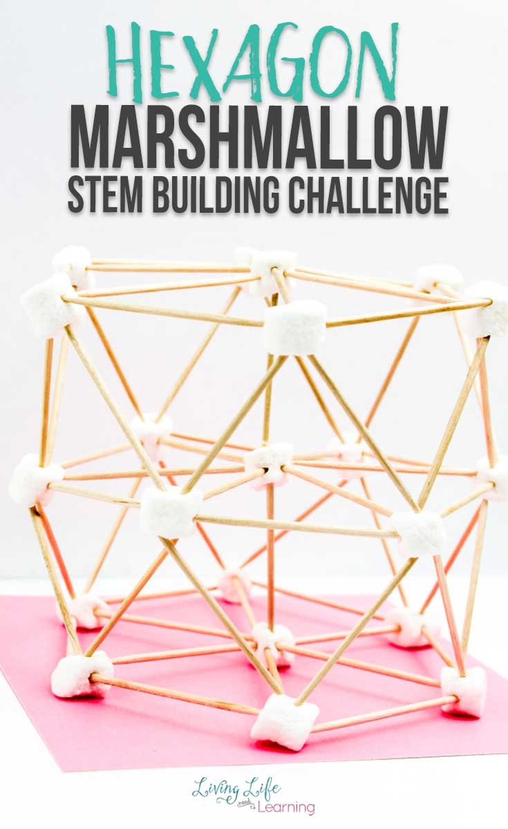 A simple hexagon marshmallow STEM building challenge, with two levels.