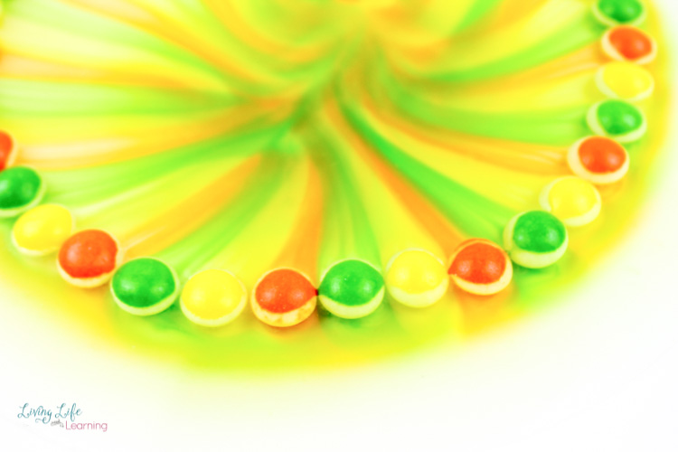 Simple skittles experiment makes yellow green and red rainbow pattern