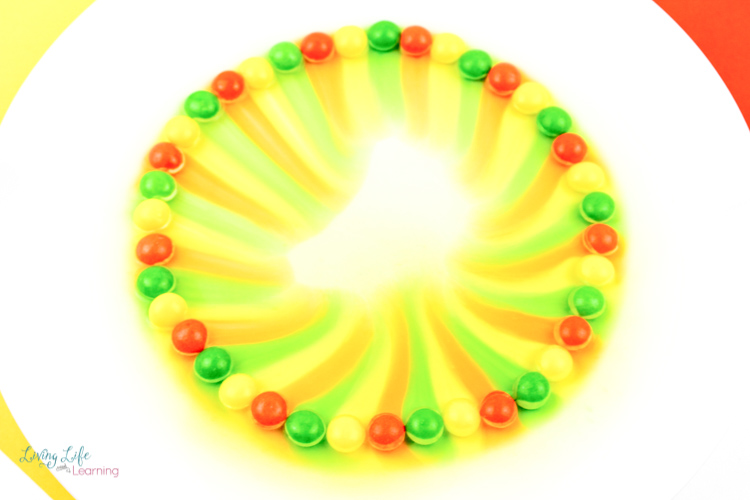 Watching the colors mix in this simple skittles experiment