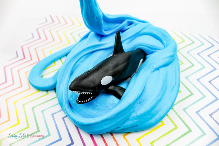 Orca whale ready to chomp peaking out of blue fluffy slime