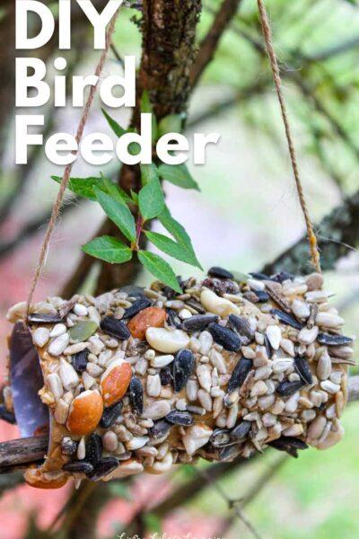 DIY Peanut Butter Bird Feeder