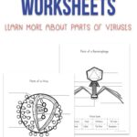 Virus Worksheets for Kids
