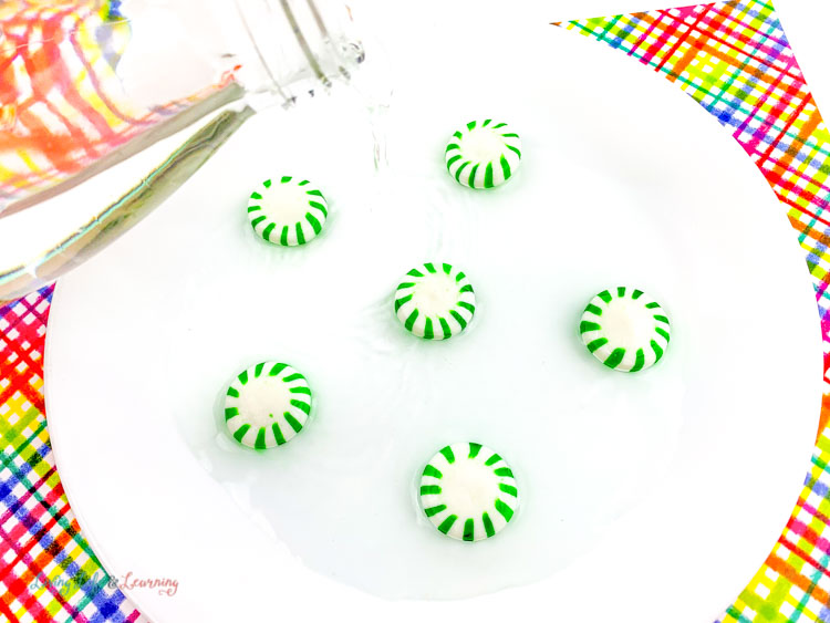 Pour warm water over candy in this easy peppermint science experiment.