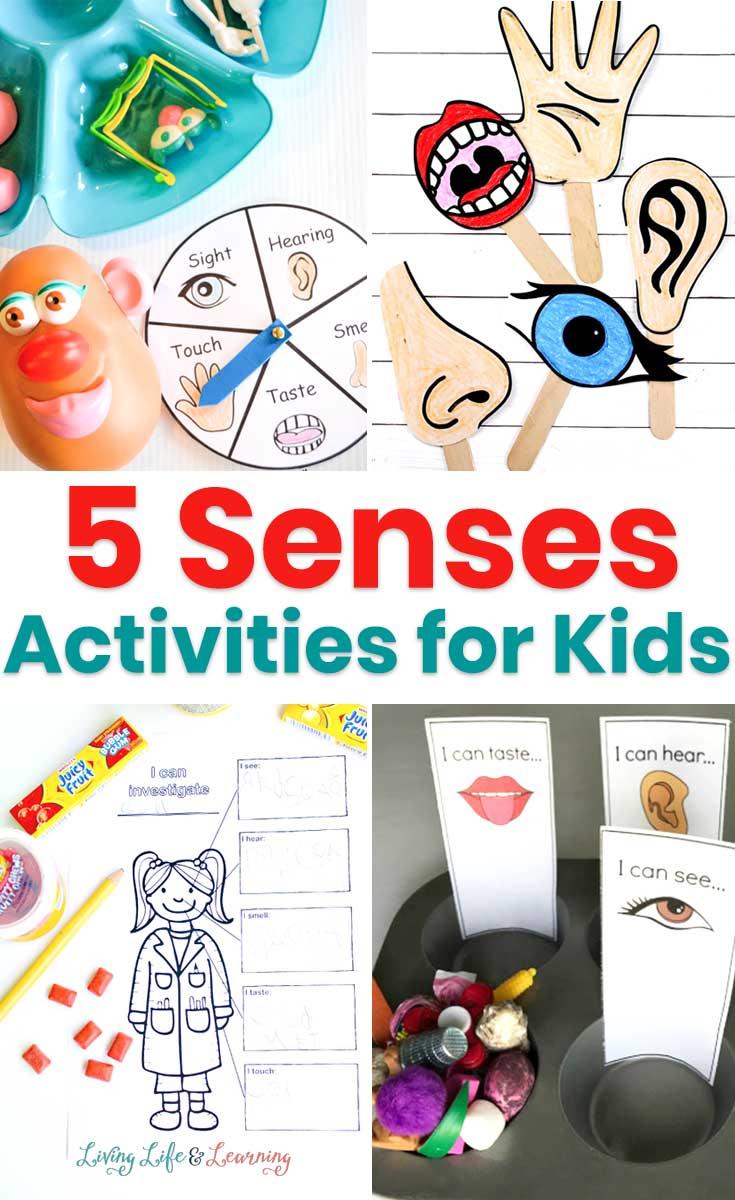 5 senses activities for kids