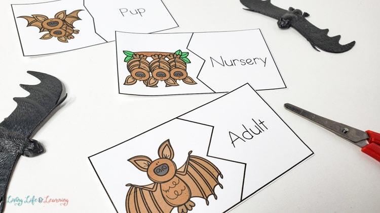 printable bat puzzles