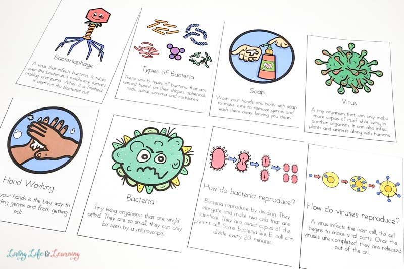 Fighting Germs Printable Cards
