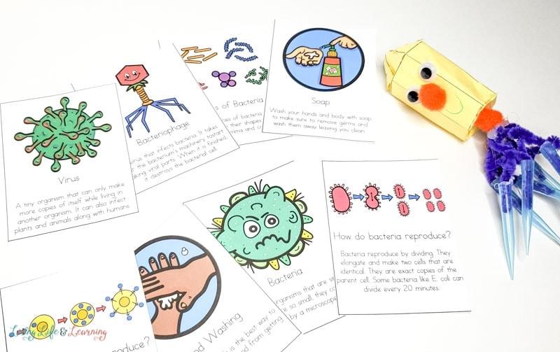 Printable Germs Cards