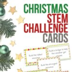 Christmas STEM Challenge Cards