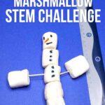 Simple Snowman Marshmallow STEM challenge