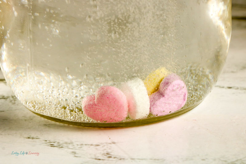 A jar showing candy hearts that have sunk to the bottom during the dancing hearts experiment.