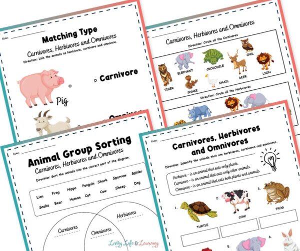 carnivore ominvore herbivore printables