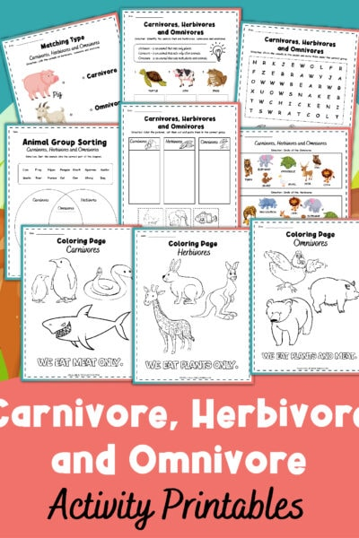 Carnivore, Herbivore, and Omnivore Worksheets