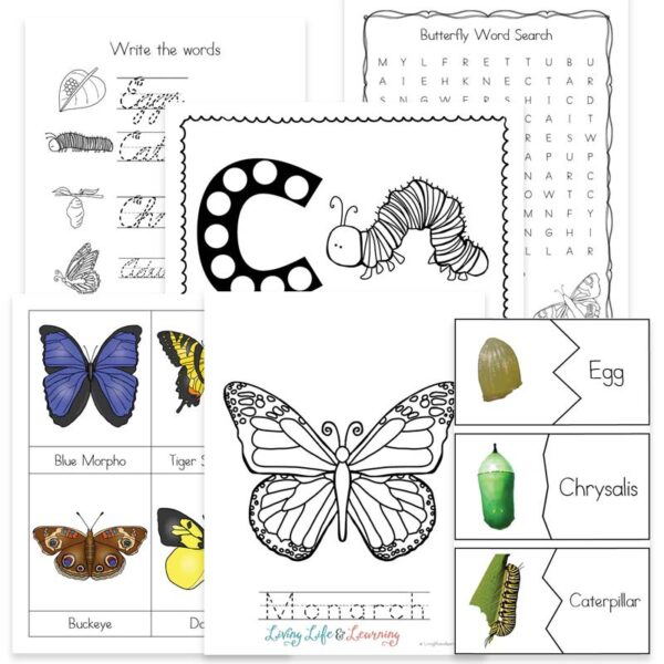 Little Learners Print & Go Activity Kit: Butterfly Life Cycle