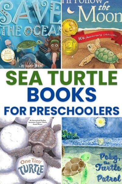 Sea Turtle Books for Preschoolers