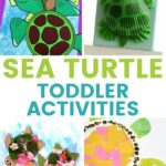 Sea Turtle Activities for Toddlers
