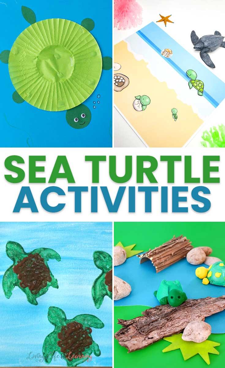 Sea Turtle Activities for Kids