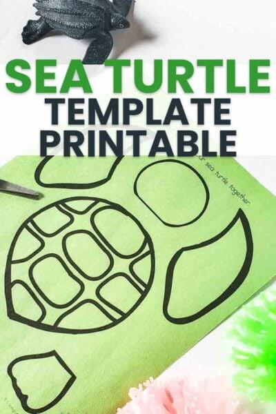 Sea Turtle Template Printable