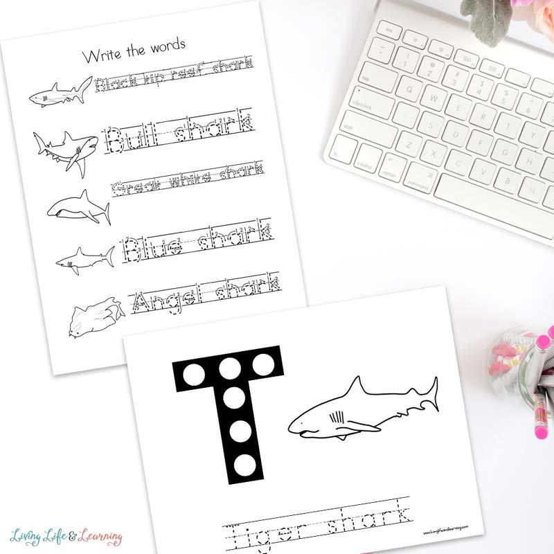 Sharks Worksheets