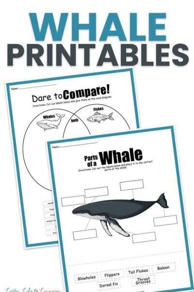 Free Whale Printables