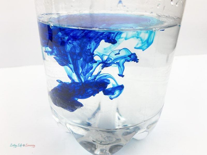 Add blue food coloring to Ocean in a Bottle Experiment