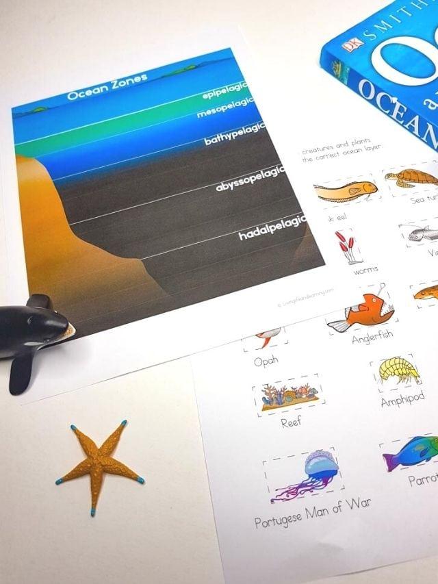 Ocean Zones Worksheet Story