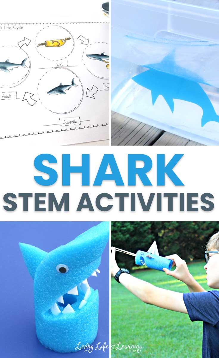 Shark STEM Activities