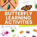 butterfly learning activities